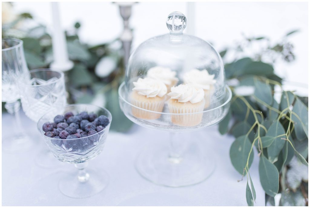 wedding vanilla cupcakes from omg on a blue table cloth by changing dreams to reality and greenery silver dollar in the background for a winter styled shoot