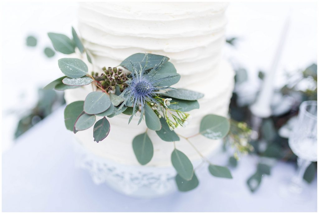 pretty wedding cake by the enchanting bouquet and changing dreams to reality with a blue thistle and silver dollar on a winter cream wedding cake outside winter sceney