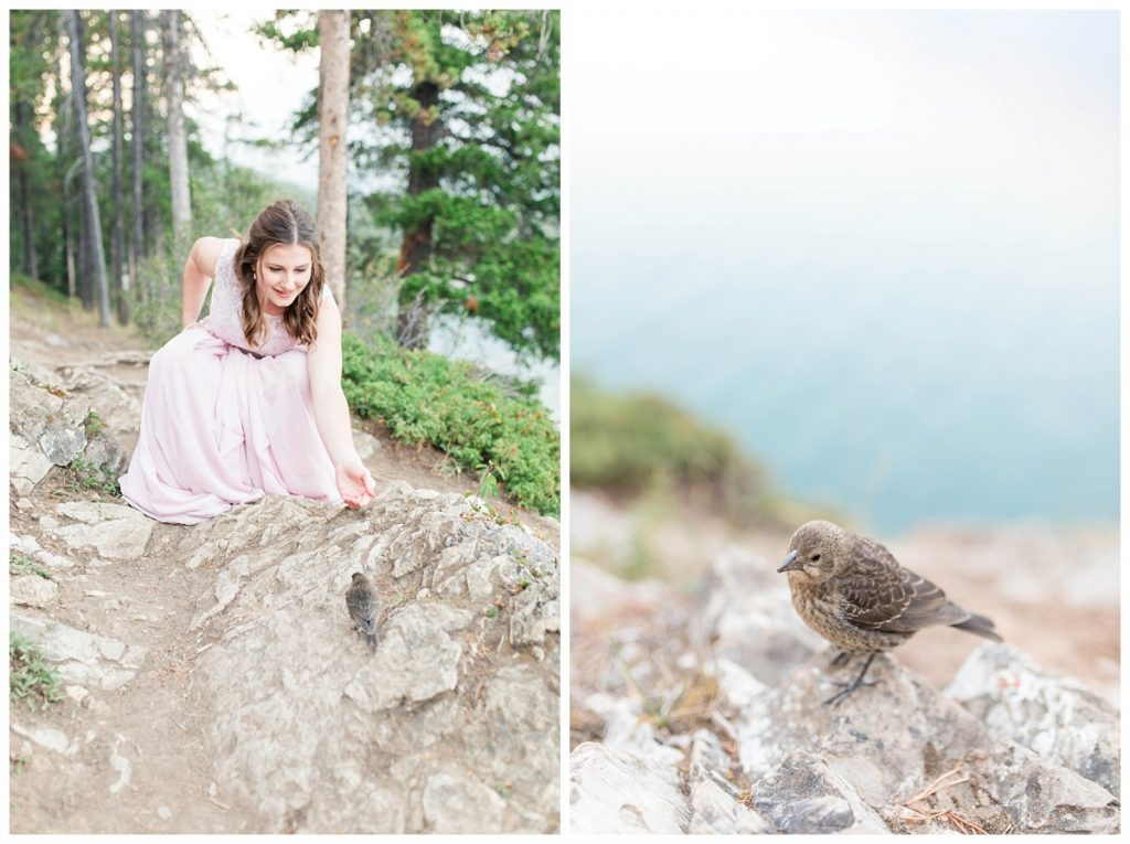 bride in her fairytale mountain photo with friendly photogenic bird in the water blush pink dress at lake minnewanka