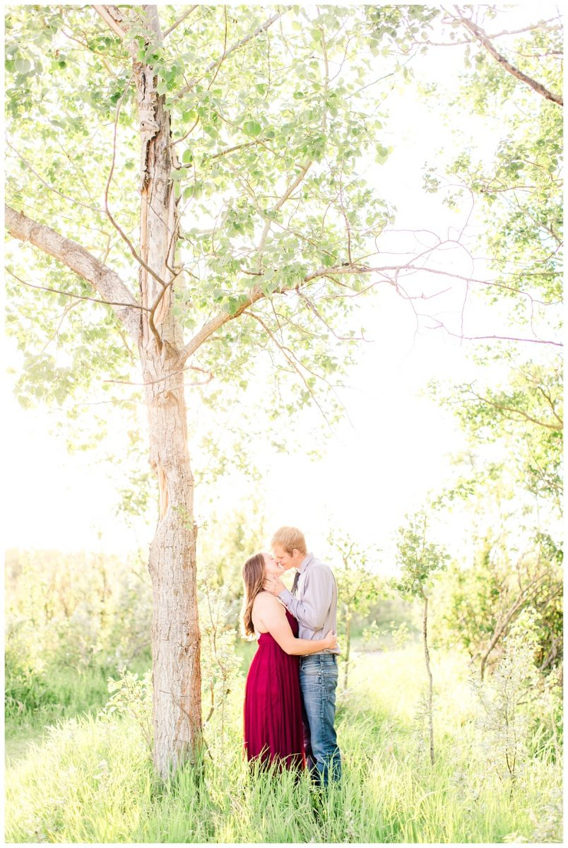 danial and shelbee kissing under a tree for grande prairie engagement session very bright light and airy