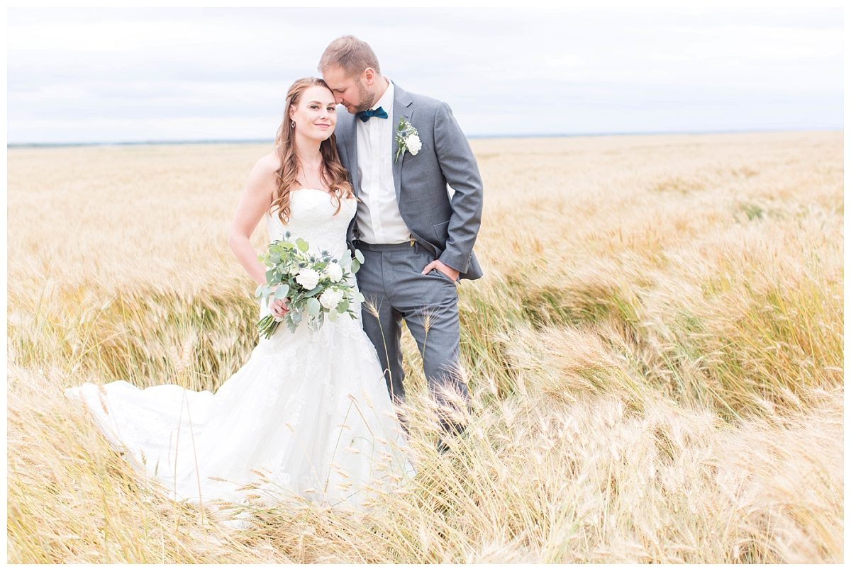 grande prairie wedding wheat field photos