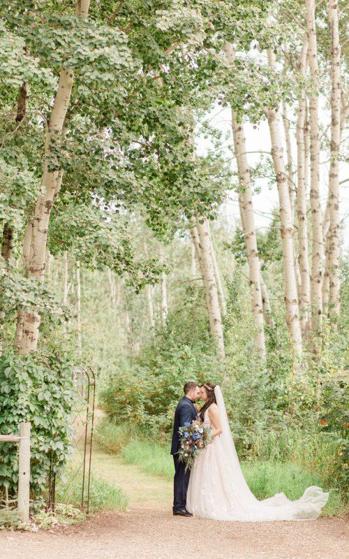 Shawn & Caitlyn   Grande Prairie Wedding Photographer   Kayla Lynn Photography